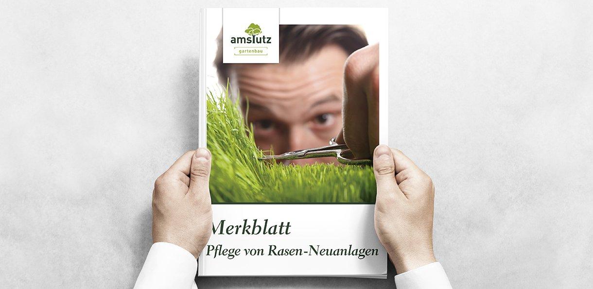 Logodesign, Prospekt, Grafik für Amstutz Gartenbau AG